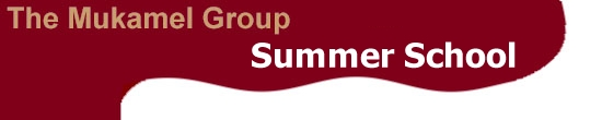 The Mukamel Group: Summer School